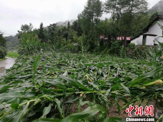 陕西略阳县持续暴雨引发山洪泥石流已致3万多人受灾