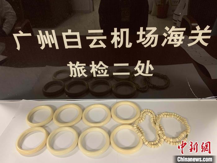 广州白云机场海关查获的藏匿于奶粉罐中的象牙制品 吕尔 摄