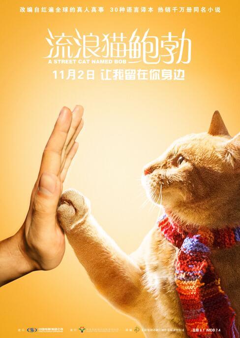 《流浪猫鲍勃》海报.jpg