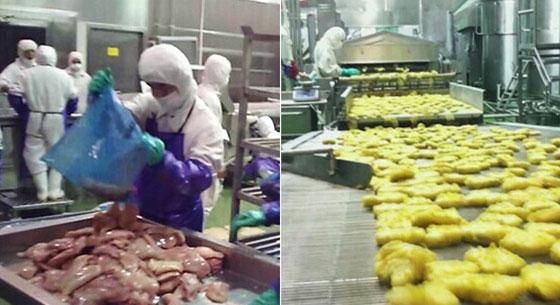 麦当劳肯德基供应商回应用过期臭肉:吃不死(视频)