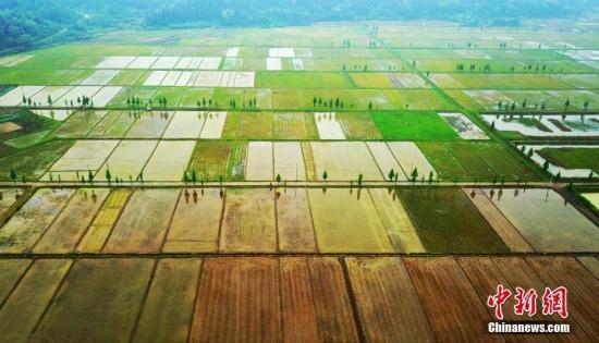 资料图:农田。 赵春亮 摄