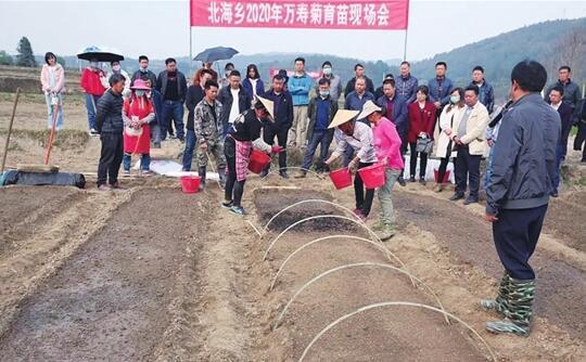 腾冲北海: 家门口就业 多渠道增收