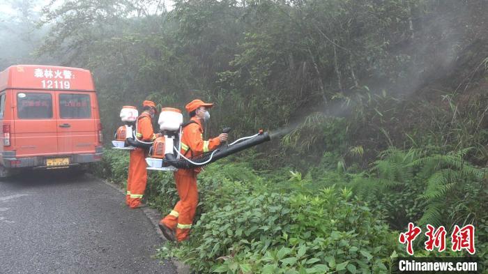 图为云南普洱市江城县护林员用喷雾器对黄脊竹蝗进行消杀。 刀志楠 摄